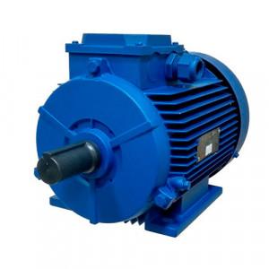 Электродвигатель АИР 100 S4 IM1001